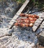 Carne nos carvões Fotografia de Stock Royalty Free