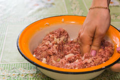 Carne picada Foto de Stock Royalty Free