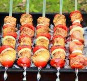Carne, pomodoro e cipolla fritti Immagini Stock