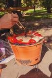Carne que grelha sobre os carvões em um assado portátil fotografia de stock royalty free