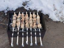 Carne saboroso roasted em carvões Fotografia de Stock Royalty Free