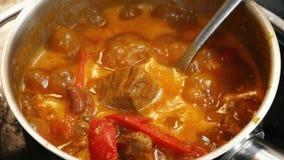 Carne in salsa al pomodoro in una pentola d'ebollizione video d archivio
