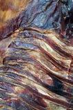 Carne secada del cordero Fotos de archivo