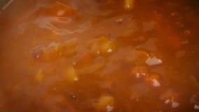 Carne Stew Cooking Closeup almacen de video