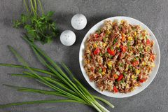 Carne suculenta misturada com o arroz, vegetarianos imagem de stock royalty free