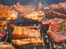A carne suculenta Roasted cozinhou sobre os carvões em um assado imagens de stock