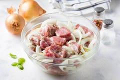 Carne suina cruda marinata con le cipolle, le erbe e le spezie per cookin fotografie stock libere da diritti