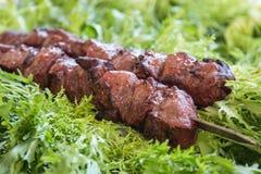 Carne suina fritta su fuoco e sulle erbe fresche Fotografia Stock Libera da Diritti