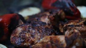 Carne sul barbecue Fotografia Stock Libera da Diritti