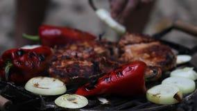 Carne sul barbecue Fotografie Stock