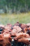 Carne sulla griglia Fotografie Stock Libere da Diritti