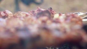 Carne sulla griglia Cottura del kebab sugli spiedi Carne fritta su mangal video d archivio