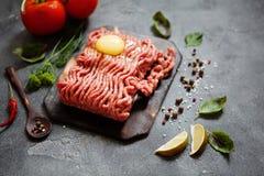 Carne triturada com vegetais e especiarias Imagens de Stock Royalty Free