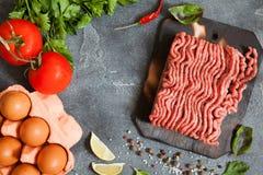 Carne triturada com vegetais e especiarias Foto de Stock Royalty Free