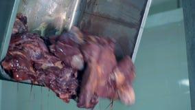 A carne vem de uma cubeta em uma fábrica de embalagem da carne filme