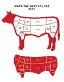 A carne vermelha corta o diagrama para o assado e o bife Imagens de Stock Royalty Free
