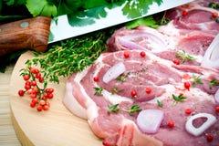 Carne y condimento sin procesar de cerdo Imágenes de archivo libres de regalías