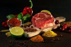 Carne y condimentos imagen de archivo
