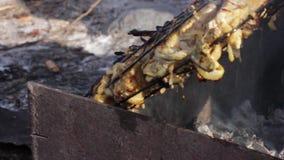 Carne y pan de la fritada en el fuego Llamas reales en el fuego con los registros ardientes metrajes