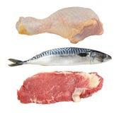 Carne y pescados foto de archivo libre de regalías