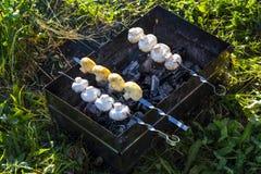 Carne y setas asadas a la parrilla Imagen de archivo libre de regalías