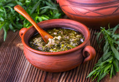 Carne y sopa de los verdes Foto de archivo libre de regalías