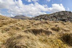 Carnedd Lwyd View royalty free stock photo