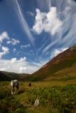 Carneddau Snowdonia Stock Image