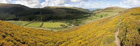 Carneddau Snowdonia Stock Afbeeldingen