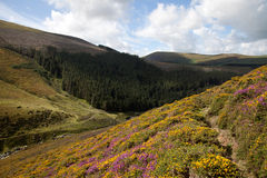 Carneddau Snowdonia royalty free stock images