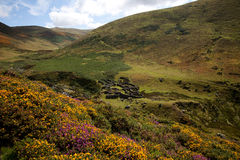 Carneddau Snowdonia Royalty Free Stock Photos