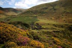 Carneddau Snowdonia Royalty-vrije Stock Foto's