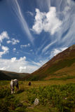 Carneddau Snowdonia Photo stock