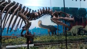 Carnegie museum of Pittsburgh. Gaint Dinosaur exhibit stock image