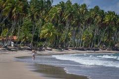 Carneiros海滩, Tamandarï ¿ ½ - Pernambuco 库存照片