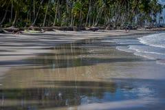 Carneiros海滩, Tamandarï ¿ ½ - Pernambuco 图库摄影