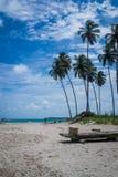 Carneiros海滩, Tamandarï ¿ ½ - Pernambuco 免版税库存图片