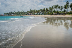 Carneiros, Pernambuco巴西海滩海滩  免版税库存照片