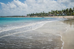 Carneiros, Pernambuco巴西海滩海滩  免版税库存图片