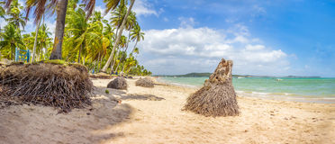 Carneiros beach. The Carneiros beach is located in the state of pernambuco, Brazil. It is located along a former coconut farm, and still keeps its wilderness stock photos