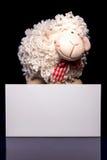 Carneiros com cartão vazio Fotos de Stock Royalty Free