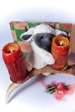 Carneiros do brinquedo com velas fotos de stock