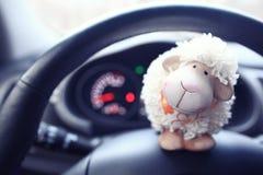 Carneiros do brinquedo no carro Imagens de Stock