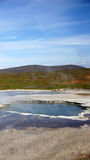 Carneiros islandêses e mola quente em Hveravelir imagens de stock
