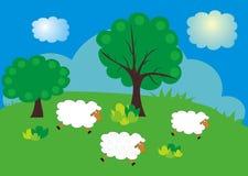 Carneiros na grama verde Fotos de Stock Royalty Free