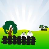 Carneiros no prado Imagem de Stock