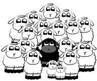 Carneiros pretos ilustração stock