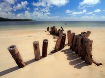 Carneiros strand Royaltyfria Bilder