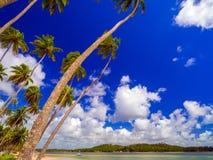 Carneiros strand Arkivfoto