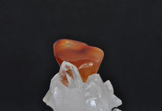 Carnelian on rock crystal Stock Photography